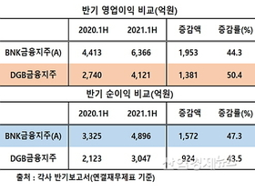 DGB금융지주, 반기 순익증가율 BNK에 석패..원인은?